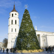 City Christmas tree, Vilnius, Lithuania - Stock Photo