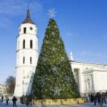 Şehir Noel ağacı, vilnius, Litvanya — Stok fotoğraf