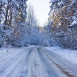 Winter road, a forest — Stock Photo #1092524