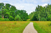 Trail in the summer the park, blue sky — Stock Photo