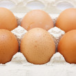 Stock Photo: Eggs in carton