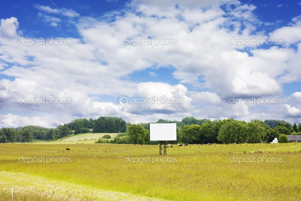 Rural landscape with cows and blank billboard — Stock Photo #1343555