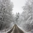 Stock Photo: Winter road through woods
