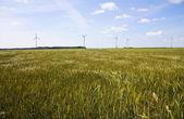 風力発電機のフィールド — ストック写真