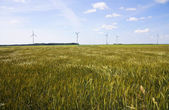 Field, wind generators — Stock Photo