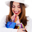 Women holding her shopping bags - Stock Photo