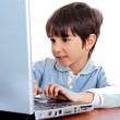 Cute caucasian kid working in laptop — Stock Photo