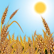 Royalty-Free Stock Imagen vectorial: Wheat. Background