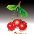 Sweet cherries — Stock Vector