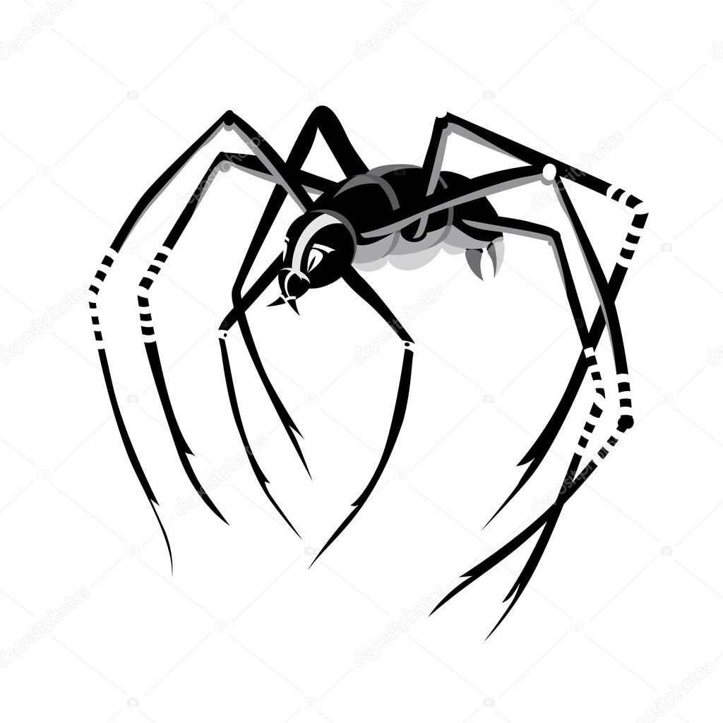 Black spider — Stock Vector #2388398