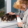 The old woman allows to have drink cat — Stock Photo