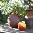 Jugs an apple and a blossoming tree — Stock Photo