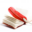A red writing on a diary — Stock Photo #1082450