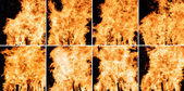 Flame samples — Stock Photo