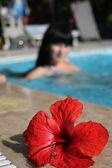 Woman swimming in the pool — Stock Photo