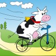 Cow on a bicycle — Stock Vector