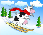 Cow on ski — Stock Vector