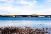 Golden fall lake — Stock Photo