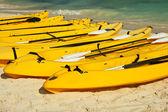 Kayaks on the beach sand — Stock Photo