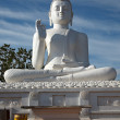Sitting Budha image - Stock Photo