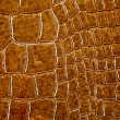 Royalty-Free Stock Photo: Crocodile skin texture
