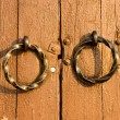 Stock Photo: Gate handles close up