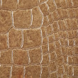 Stock Photo: Crocodile skin texture
