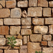 Stone wall of Mayan ruins - Stock Photo