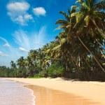 Idyllic beach. Sri Lanka — Stock Photo