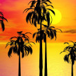 Royalty-Free Stock Photo: Sunset Palm