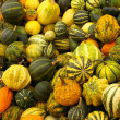 Royalty-Free Stock Photo: Various kinds of pumpkins