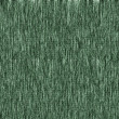 Royalty-Free Stock Photo: Green canvas texture