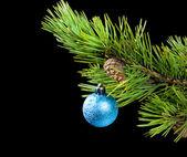 Toy cristmas,blue toy — Stock Photo