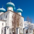 Orthodox church  the Russian — Stock Photo