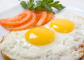 Vynikající vejce — Stock fotografie