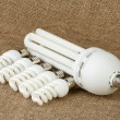 Stock Photo: Power saving up bulbs