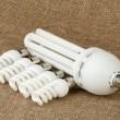energibesparing upp lökar — Stockfoto