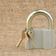 Royalty-Free Stock Photo: Padlock