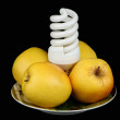 Bulb and apples on a plate — Stock Photo