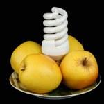 glödlampa och äpplen på en tallrik電球と皿の上のリンゴ — Stockfoto