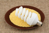 Lightbulb and plate with millet — Stock Photo
