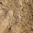 Stock Photo: Soil erosion