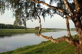 Morning on coast of Volga — Stock Photo