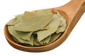 Bay leaf in a wooden spoon — Stock Photo