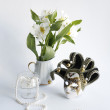 Still-life with a white flower — Stock Photo