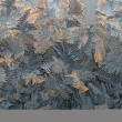 Frost patterns - Stock Photo