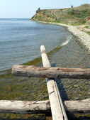 Logs and stones on seacoast — Stock Photo