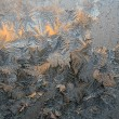 Frost patterns — Stock fotografie