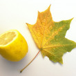 Leaf of a maple and lemon — Foto Stock