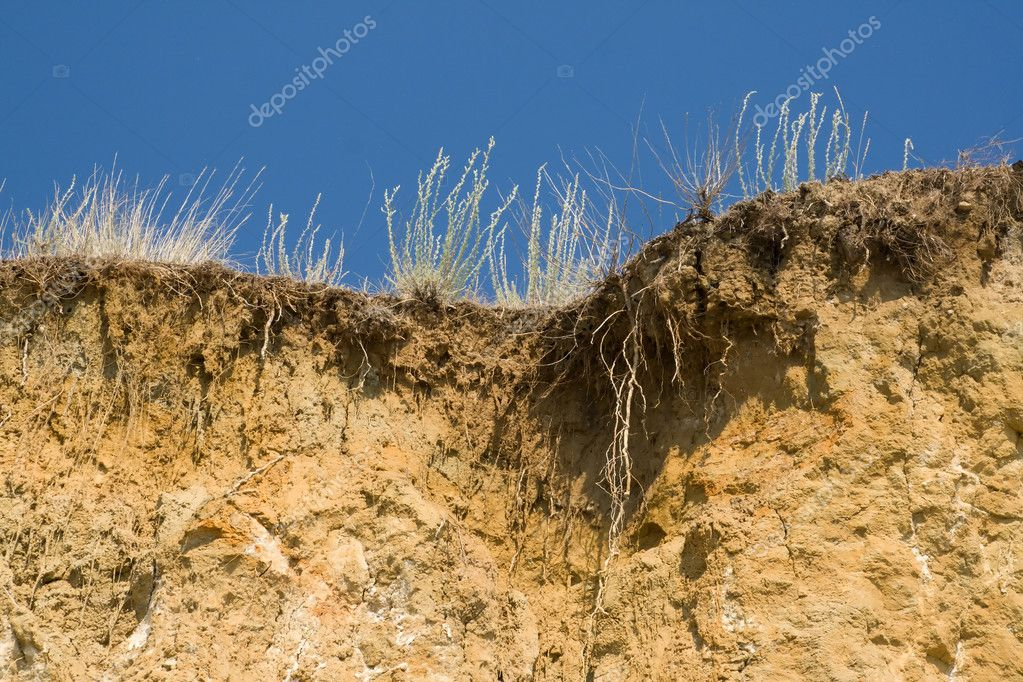 Dry grass at the edge of cliff. Sky, wormwood, roots. — Stock Photo #1224563
